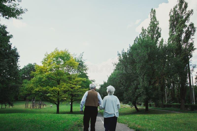 老夫妇在绿色公园走开 祖母和祖父他们的金婚庆祝的 祖母和祖父 库存图片