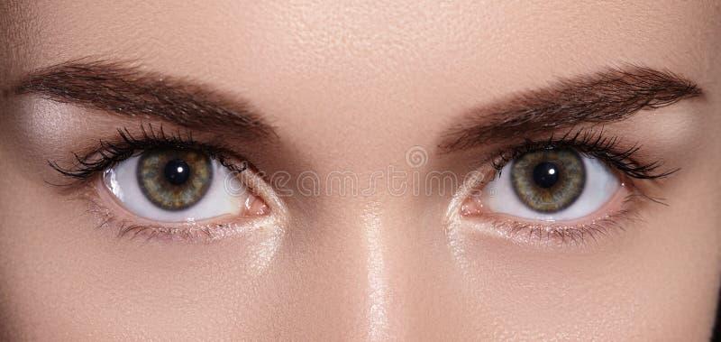 美丽的女性眼睛特写镜头宏指令与完善的形状眼眉的 干净的皮肤,时尚Naturel构成 好视觉 库存照片