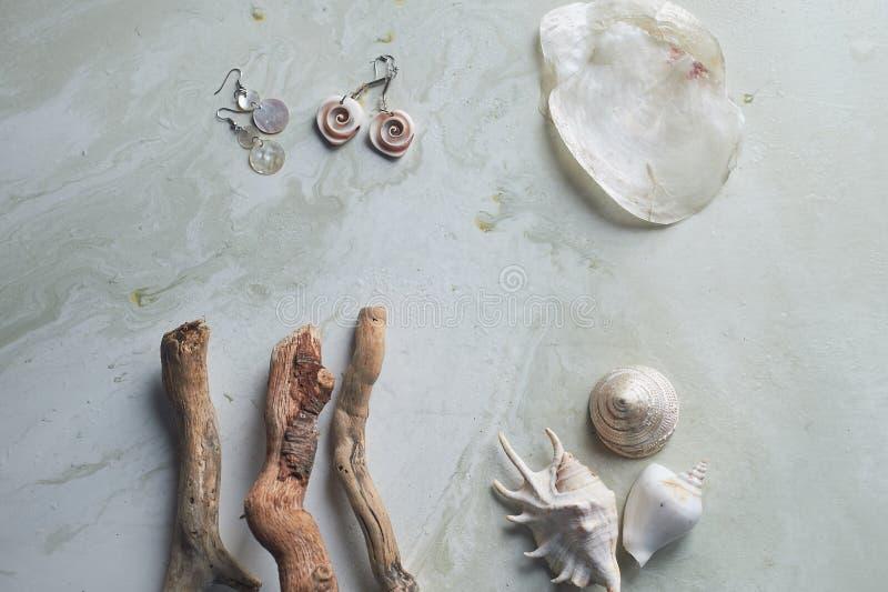 在灰色大理石背景的海汇集 贝壳和真珠色的耳环 夏天首饰 库存图片