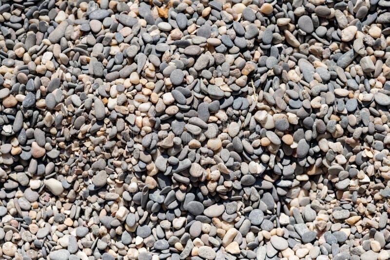 海小卵石纹理 小岩石 小多彩多姿的小卵石石头 海滩石头表面 库存图片