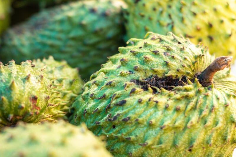 Graviola sur le marché Fruit blanc très doux de pulpe Fruit tropical exotique du Brésil images libres de droits