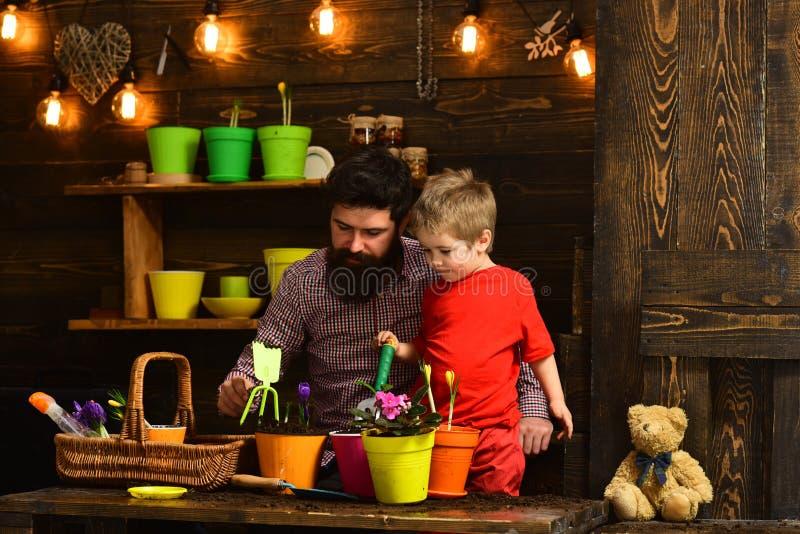Πατέρας και γιος Ημέρα των πατέρων χαρούμενοι κηπουροί με άνθη από την άνοιξη γενειοφόρος άνδρας και μικρό παιδί αγαπούν τη φύση  στοκ εικόνες