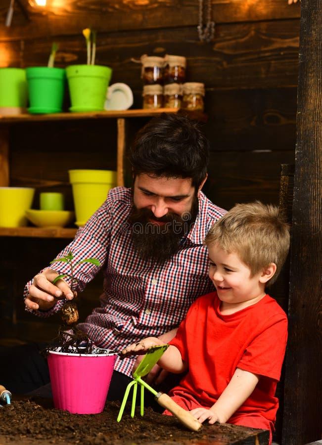 Πατέρας και γιος Ημέρα της οικογένειας Θερμοκήπιο γενειοφόρος άνδρας και μικρό παιδί αγαπούν τη φύση χαρούμενοι κηπουροί με άνοιξ στοκ φωτογραφία