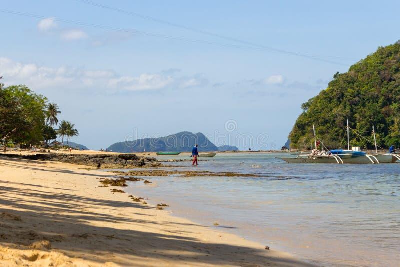 热带海滩,有树木、船只和海岸 海滩旅游景观 热带天堂 库存照片