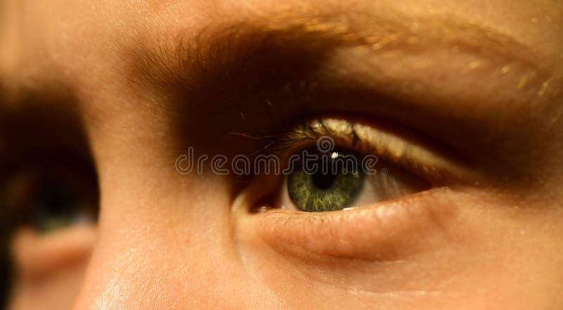 Vad säger ditt öga om din hälsa? Liten pojke i ögonlinsen Den lilla pojken har dålig syn Synkorrektion vid arkivfoto