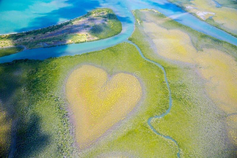 Röh, flygsyn, mangrovar liknar ett hjärta uppifrån, Nya Kaledonien, Mikronesien Jordens hjärta Jord från ovan royaltyfria bilder