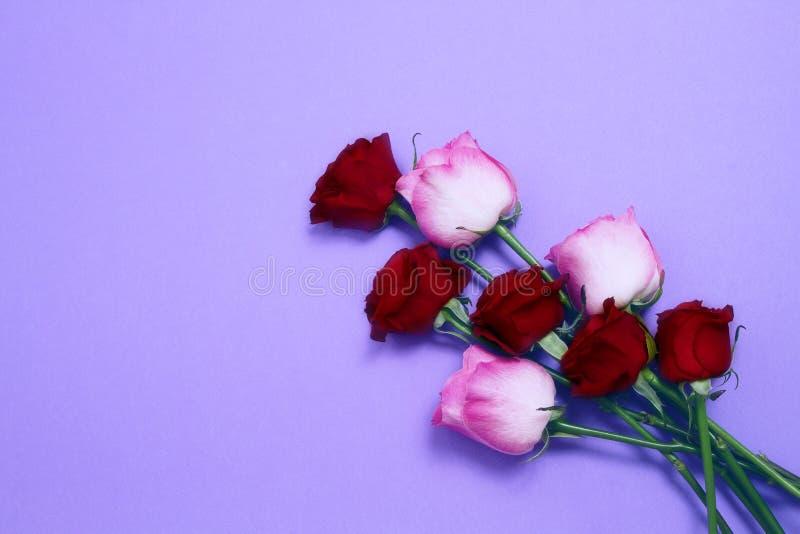 Enviar flores para o conceito online Entrega de flores para o dia dos namorados e para o dia da mãe Bouquet de rosas rosa vermelh fotos de stock