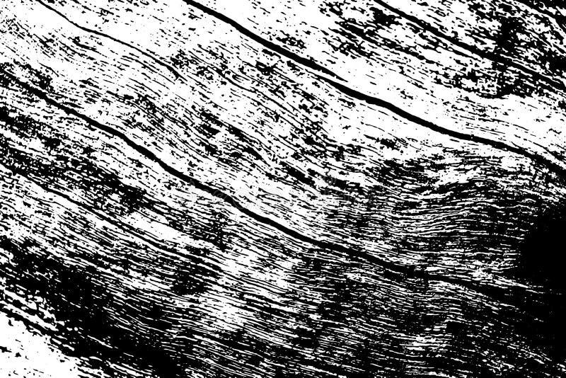 黑白木纹 质朴的木材表面追踪背景 树干自然纹理 库存例证