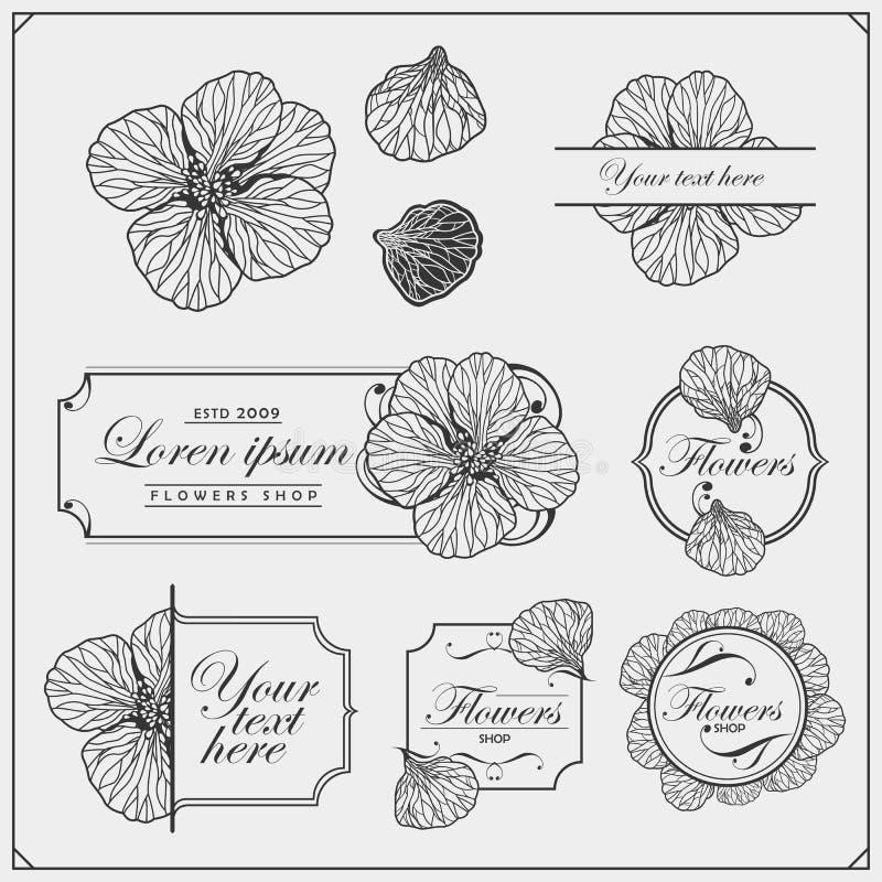 Ställ in av inbjudan- och för bröllopkortdesign beståndsdelar Blom- dekorativ affisch, hälsningkort Trevliga designbest?ndsdelar  royaltyfri illustrationer