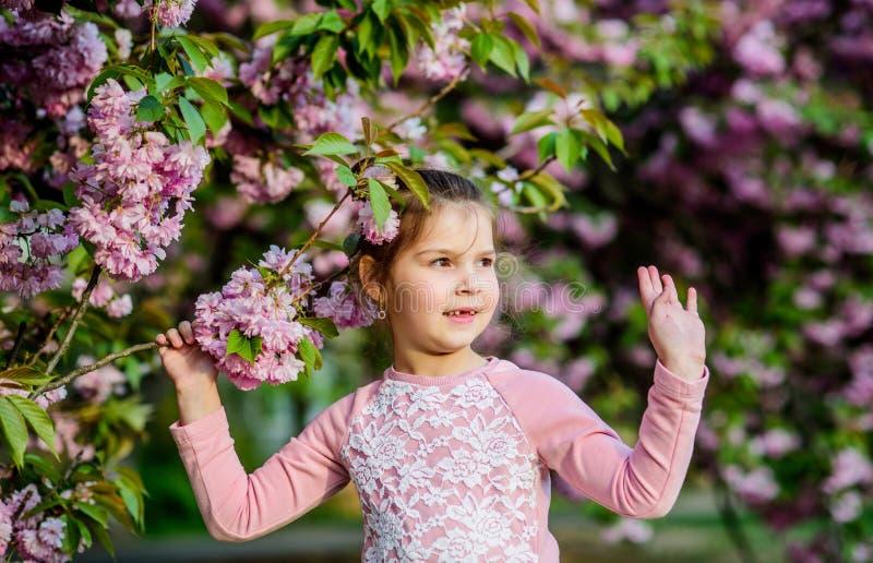 Magnífica belleza floral Fondo de flores de cereza Felices vacaciones de primavera Parque y jardín Niña pequeña en fotos de archivo