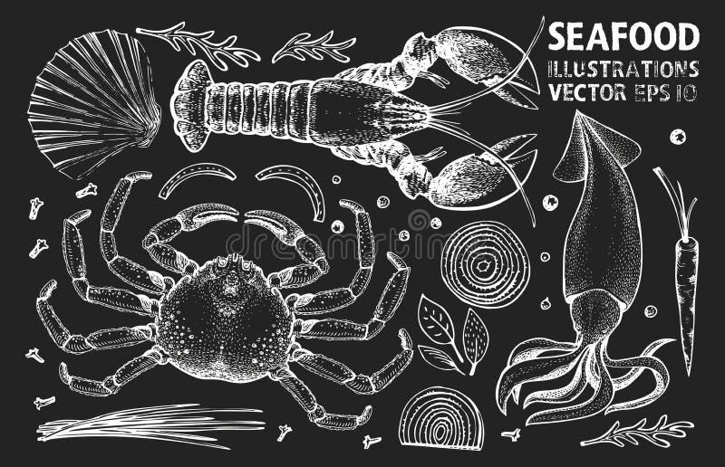 Vektoruppsättning för skaldjur och kryddor Bilder ritade med vindruta på krittavlan Kan användas för restauranger, omslag, förpac stock illustrationer