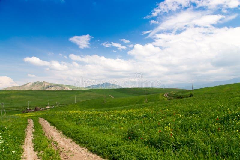 E Route de campagne de montagne parmi les collines vertes Herbe vert clair images libres de droits