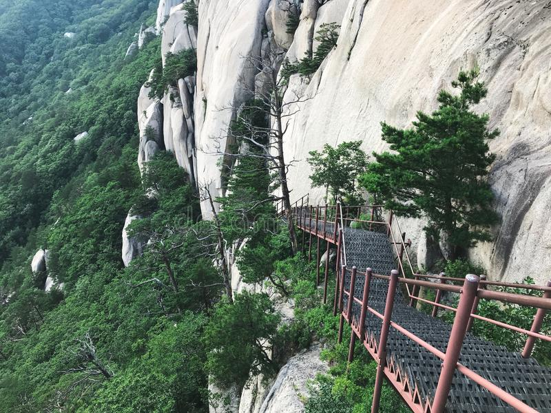 E Seoraksan park narodowy 30 target1781_1_ strażników Lipiec królewiątka Korea kumpel s Seoul południe zdjęcia royalty free
