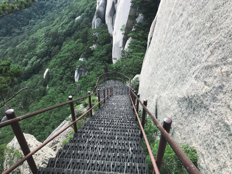E Seoraksan park narodowy 30 target1781_1_ strażników Lipiec królewiątka Korea kumpel s Seoul południe fotografia royalty free