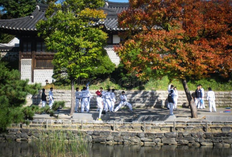 E Seoul royaltyfria foton
