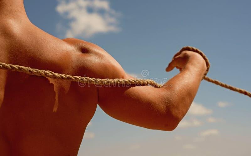 E Silna ręka i ramiona pociąga arkanę Test mięśniowa siła Sporta szkolenie physical zdjęcie royalty free