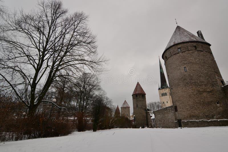 E tallinn эстония стоковая фотография