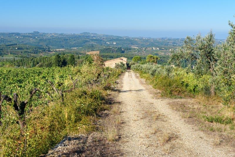 E tuscany L'Italia immagine stock libera da diritti