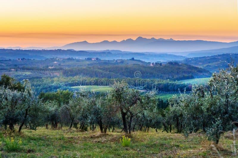 E tuscany l'Italie photos libres de droits