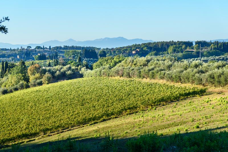 E tuscany l'Italie image stock