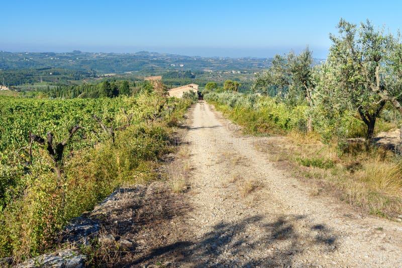 E tuscany Włochy zdjęcie stock