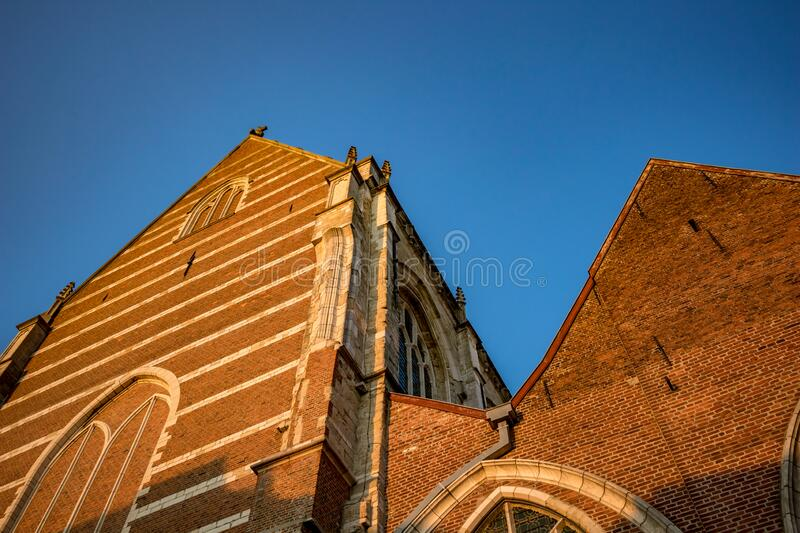 Church of Aalst, Belgium, beautiful afternoon. E view, walls lit by falling sunlight of Collegiate Church Saint-Martin. Street image from below, clear blue sky royalty free stock photography