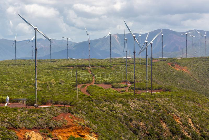 E Vindkraftväxt field turbines wind yellow royaltyfri foto
