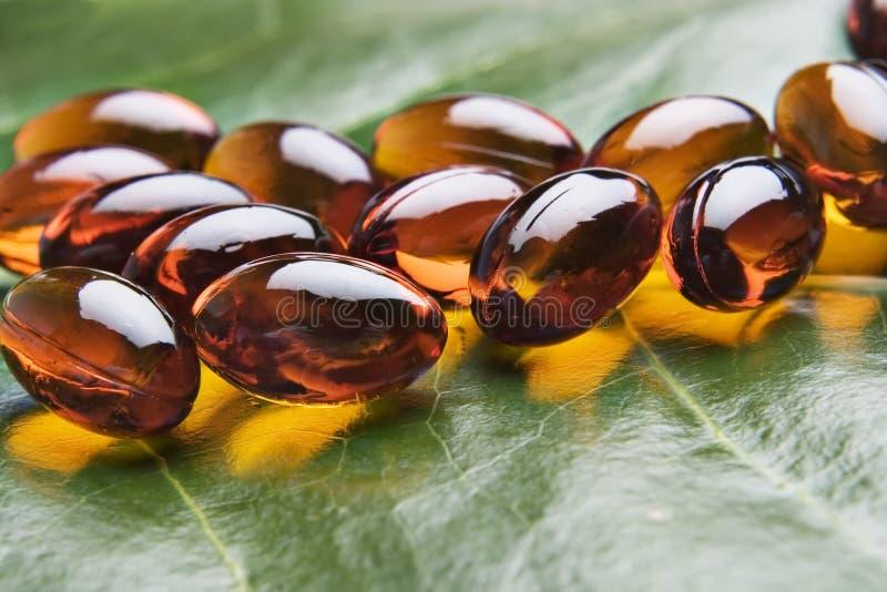 e-vitamin royaltyfri foto