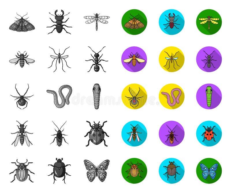 E Web d'actions de symbole de vecteur d'arthropode d'insecte illustration de vecteur