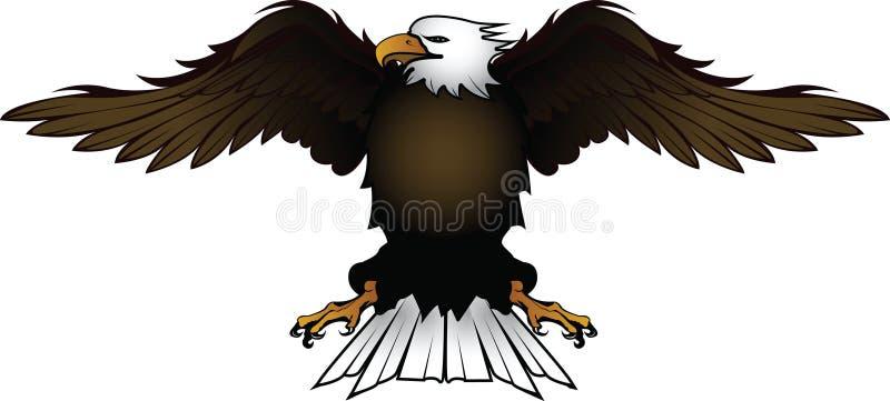 Eagle_1 illustration stock