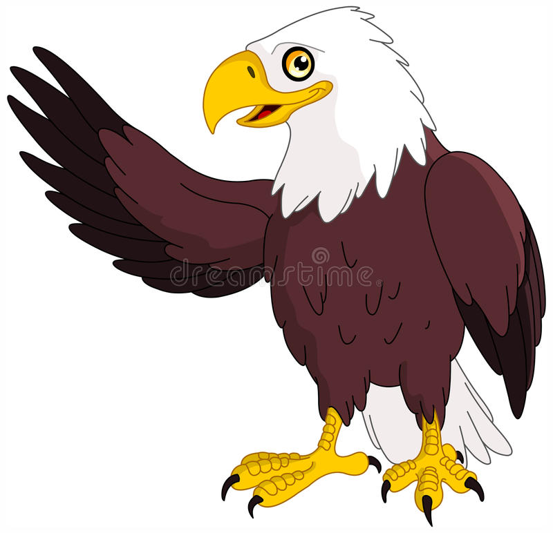 Eagle. Illustration of american bald eagle presenting