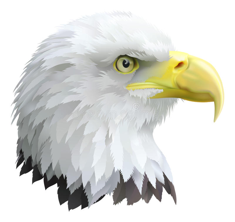 Eagle royalty free illustration