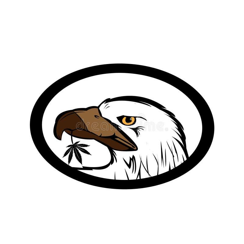Eagle photos stock