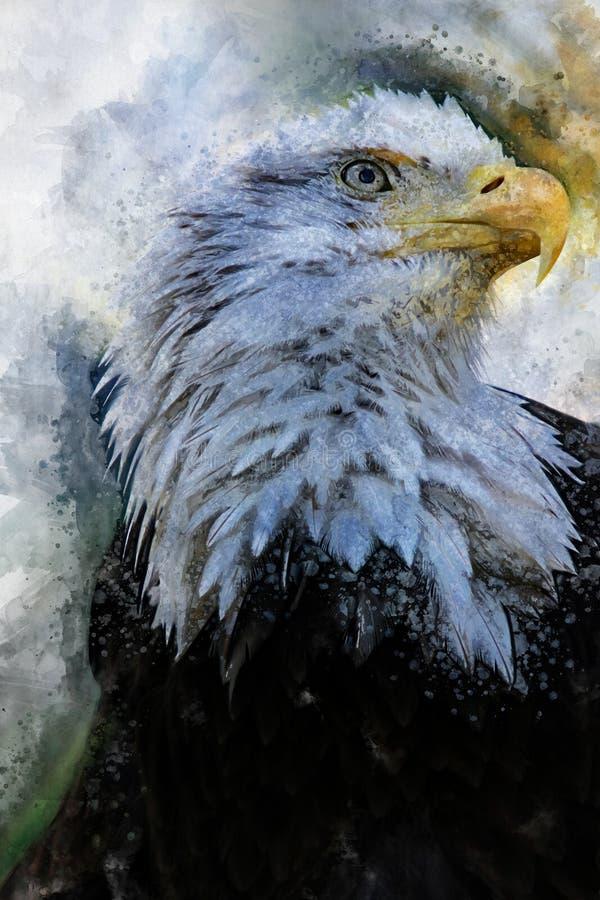 Eagle America akwareli ptasi obraz ilustracji