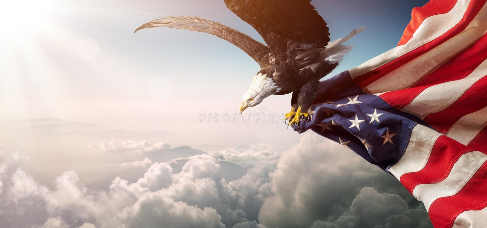 Eagle With American Flag Flies fotografie stock libere da diritti