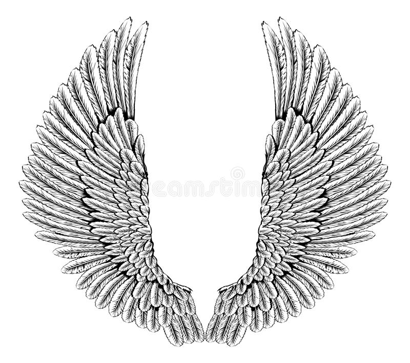 Eagle or angel wings stock illustration