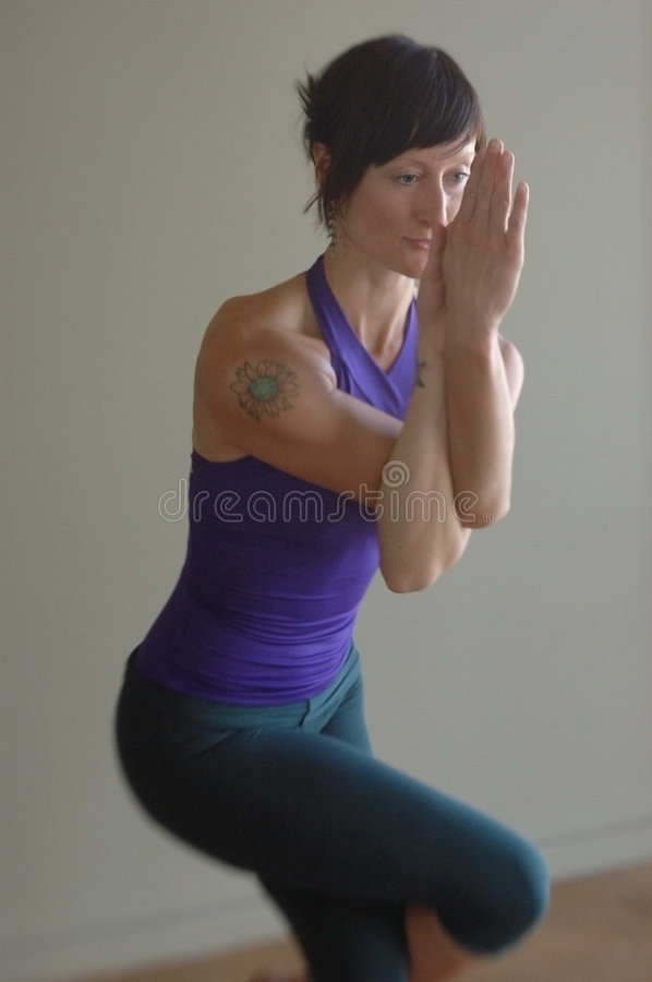 Eagle Asana Stock Images