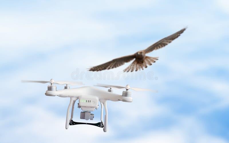Eagle attacca il fuco di volo fotografie stock libere da diritti