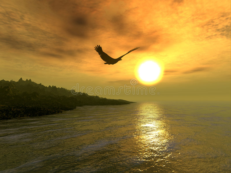 Download Eagle Coast stock illustration. Illustration of bird, evening - 27234