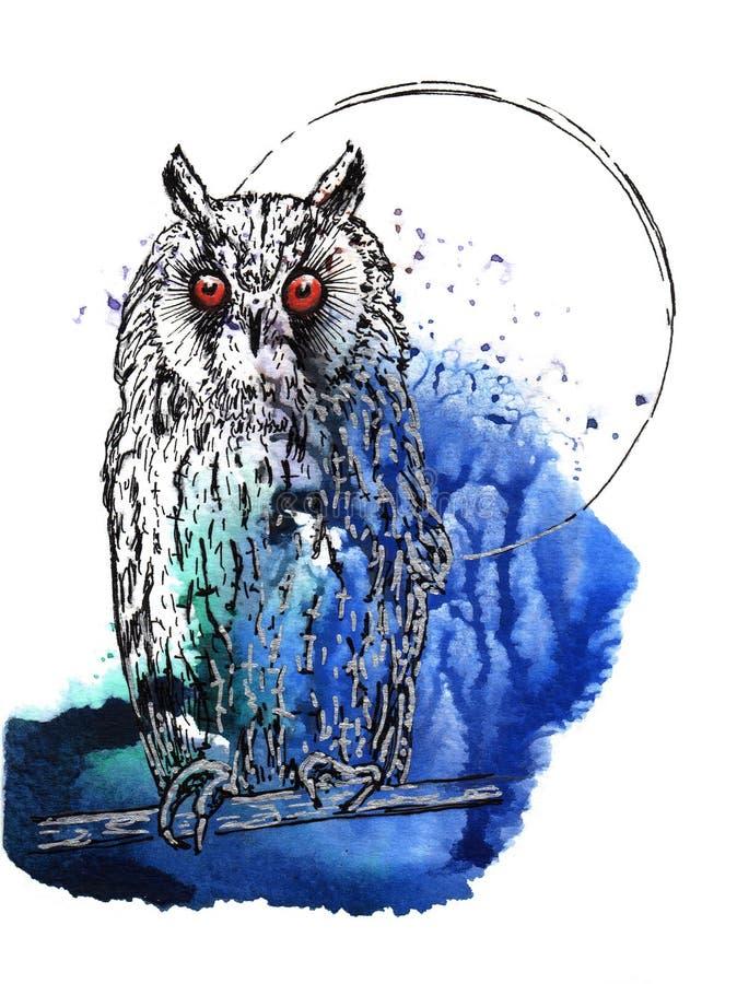 Eagle-coruja ilustração royalty free
