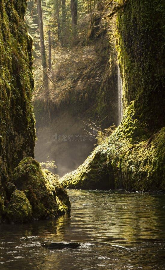 Eagle Creek photo stock