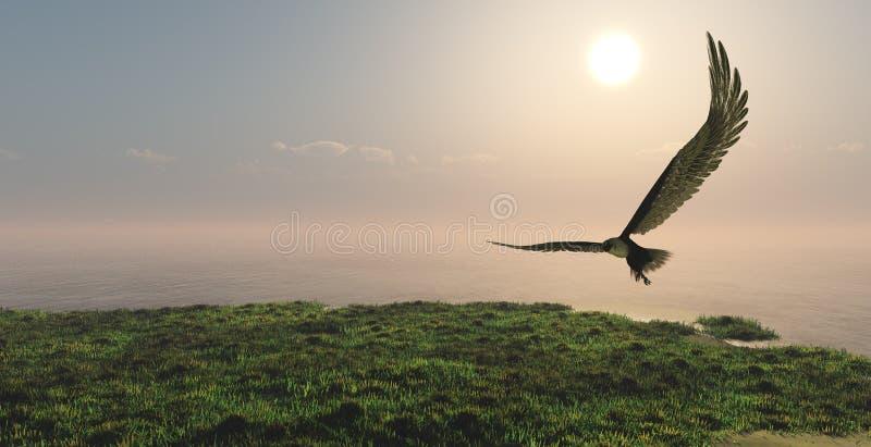 Eagle die in de wolken vliegen stock afbeelding