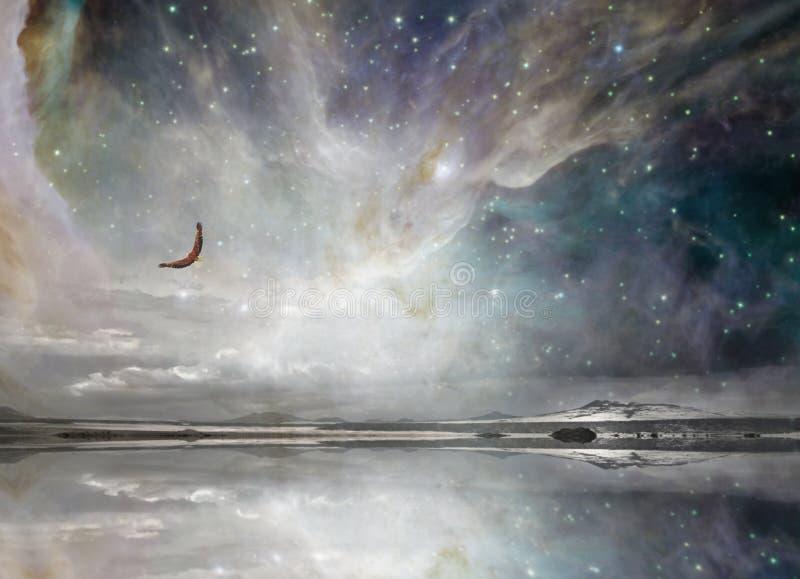 Eagle en cielo estrellado de la noche imagenes de archivo