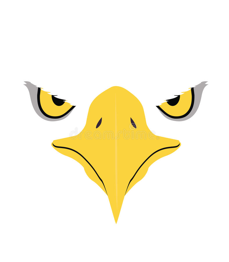 Eagle eyes, Front face royalty free illustration