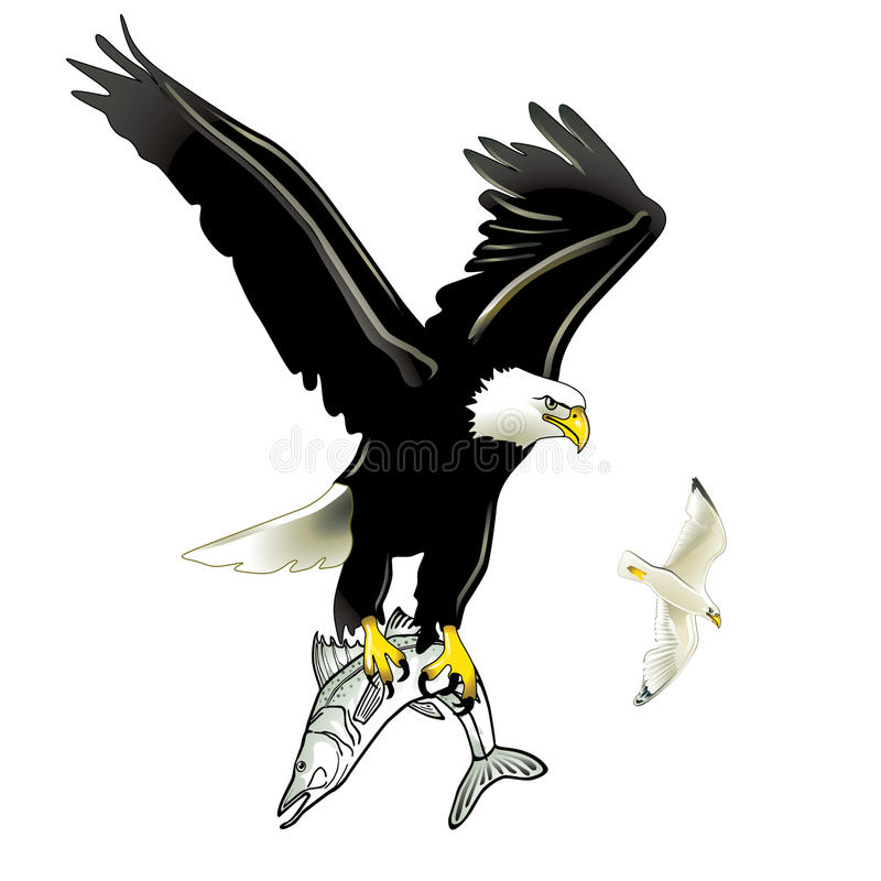 Eagle and Fish vector illustration