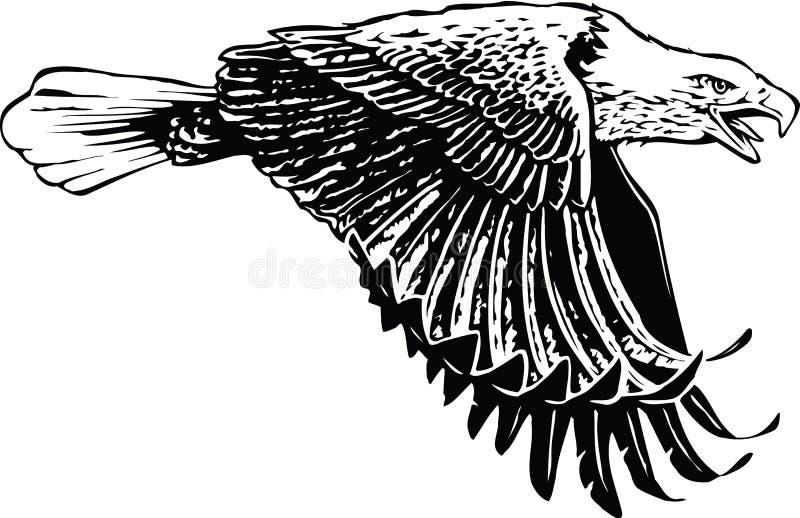 Eagle Flying Illustration ilustração stock