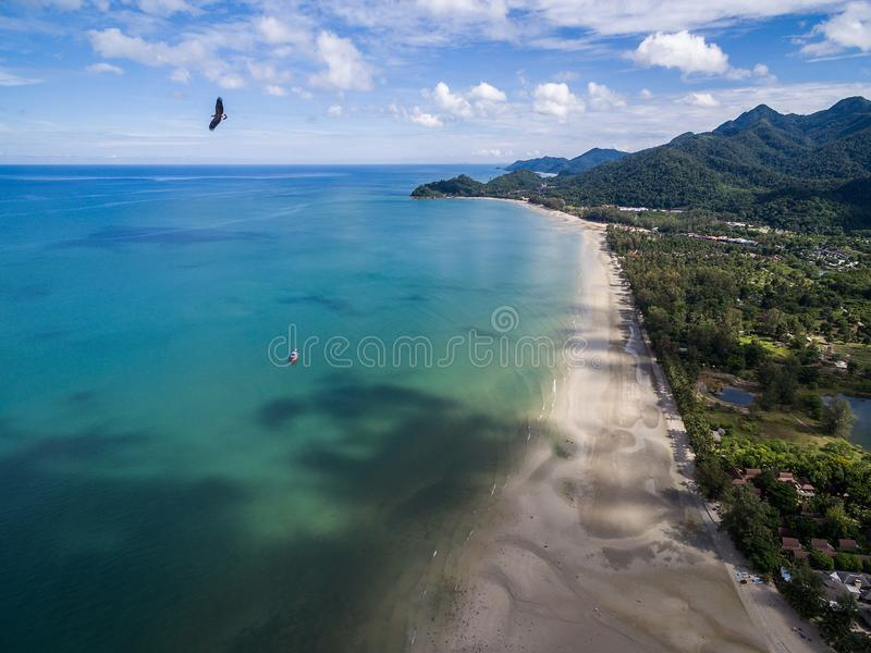 Eagle flying over beach and blue sea in Koh Chang royalty free stock photo