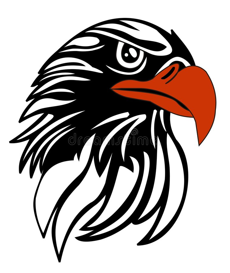 Download Eagle head stock vector. Image of black, bird, eagle, white - 6697029