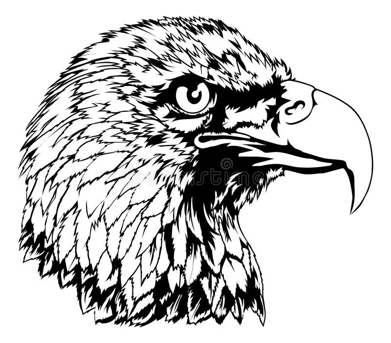 Eagle Head Illustration calvo ilustración del vector