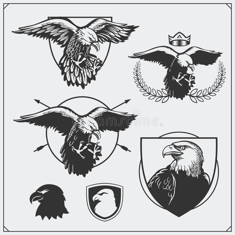 Eagle heraldry coat of arms. Labels, emblems and design elements for sport club. royalty free illustration